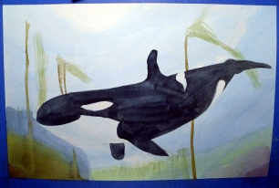 Watercolor Orca