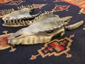 Raku-fired dragon skull