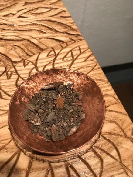 Earth - San Jose dirt with an ash tree seed